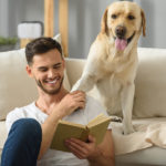 Tips para buscar una vivienda Pet Friendly